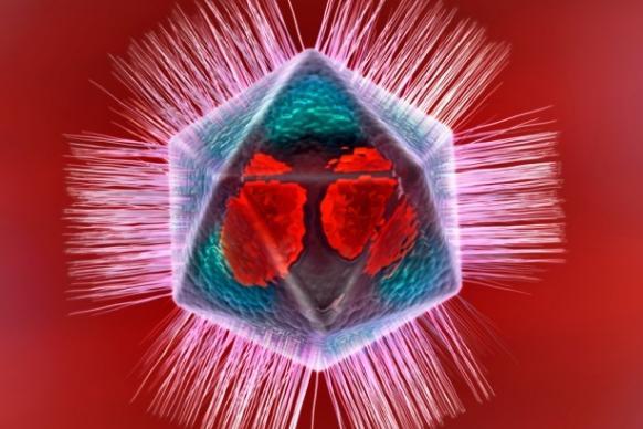 Мимивирус