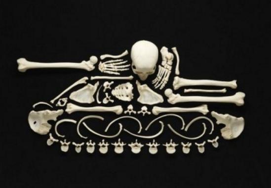 мозаика из костей
