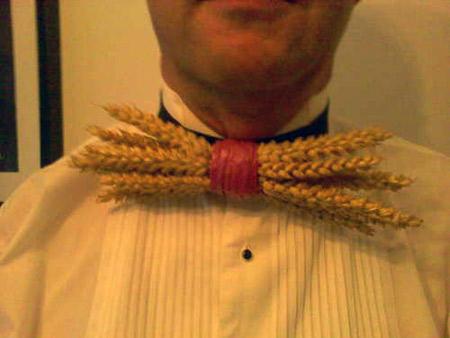 галстуки-приколы необычные