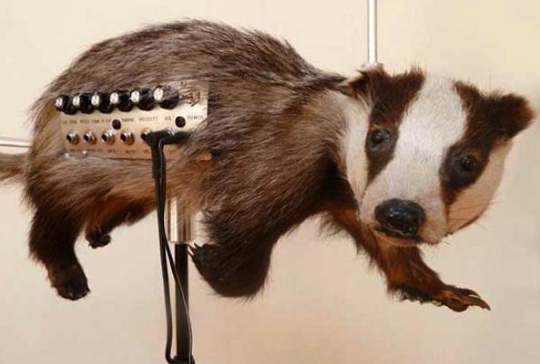 странные музыкальные инструменты