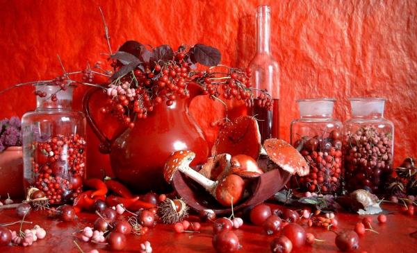 красный цвет оттенки
