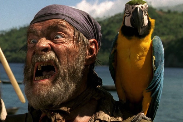 интересные факты о пиратах