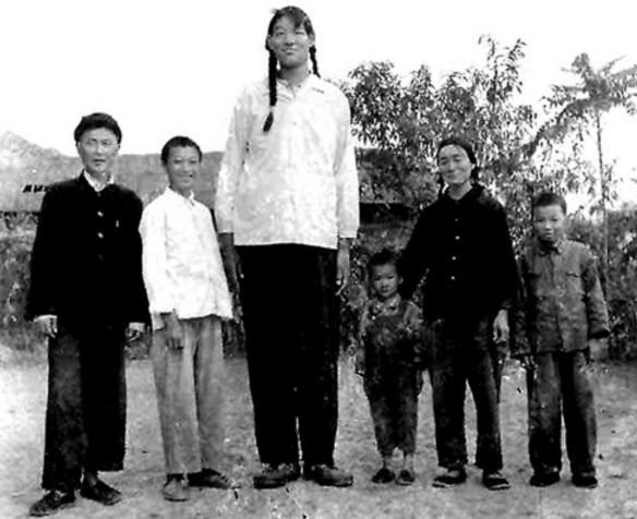 Цзэн Цзиньлянь
