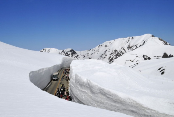 все о снеге дорога