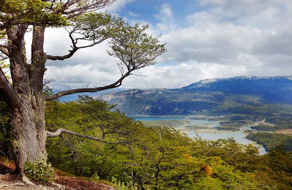 Южная Америка природа
