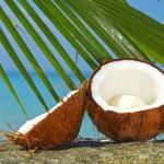 невероятные факты о кокосе